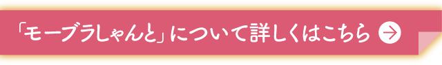 しゃんとシリーズ_02